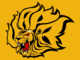 Arkansas_Pine_Bluff_Golden_Lions01