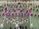UAPB Band