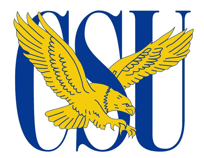 Coppin State's Danielle Smith Named NCAA Batting Average ...